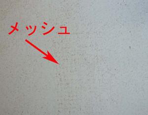 Muro1233