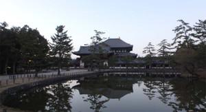 Nara371_2