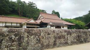 Sizu9101